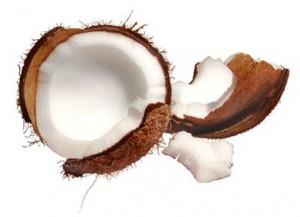 coconu2
