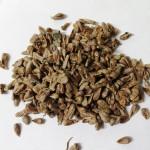 ノニの樹を育ててみませんか:2019年2月産のノニ種子入手-完売
