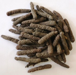 Javanese long pepper M&K 1